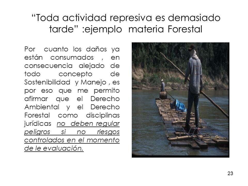 23 Toda actividad represiva es demasiado tarde :ejemplo materia Forestal Por cuanto los daños ya están consumados, en consecuencia alejado de todo con