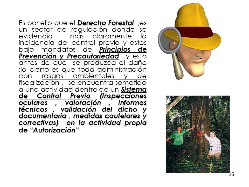 25 Derecho Forestal Principios de Prevención y Precautoriedad Sistema de Control Previo (Inspecciones oculares, valoración, informes técnicos, validac