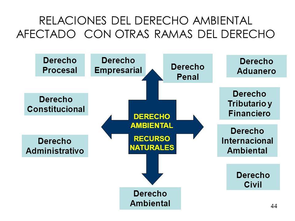 44 RELACIONES DEL DERECHO AMBIENTAL AFECTADO CON OTRAS RAMAS DEL DERECHO DERECHO AMBIENTAL RECURSO NATURALES Derecho Constitucional Derecho Administra
