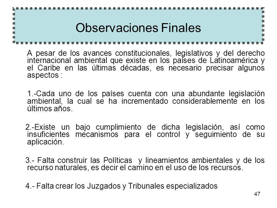 47 Observaciones Finales A pesar de los avances constitucionales, legislativos y del derecho internacional ambiental que existe en los países de Latin