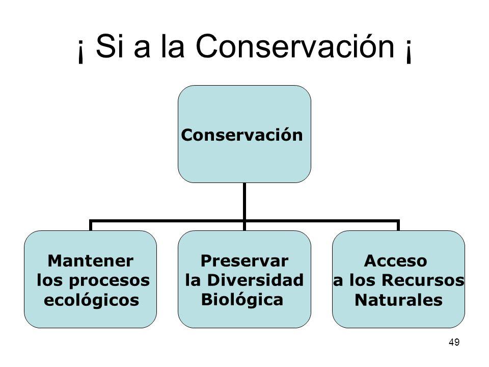 49 ¡ Si a la Conservación ¡ Conservación Mantener los procesos ecológicos Preservar la Diversidad Biológica Acceso a los Recursos Naturales