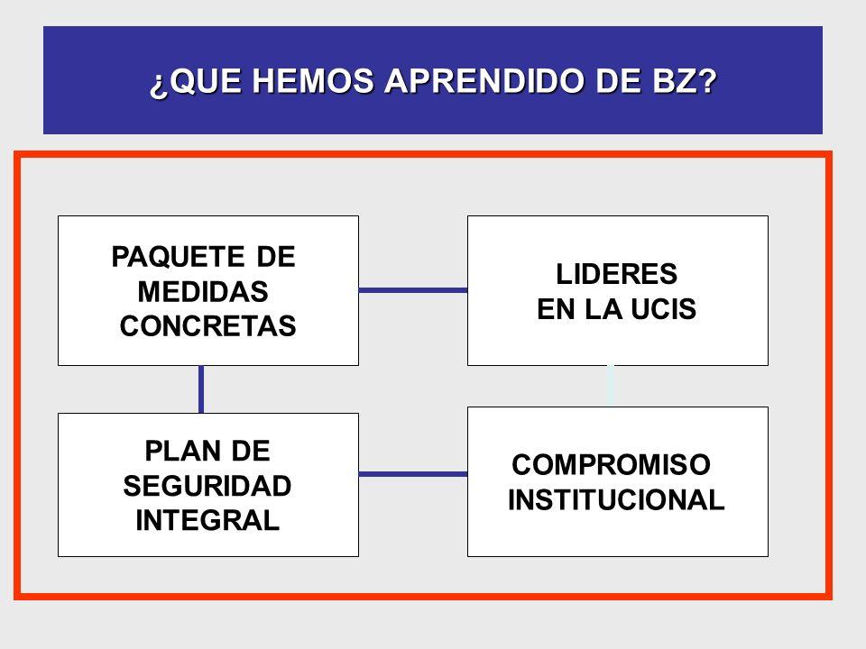 ¿QUE HEMOS APRENDIDO DE BZ? PAQUETE DE MEDIDAS CONCRETAS PLAN DE SEGURIDAD INTEGRAL LIDERES EN LA UCIS COMPROMISO INSTITUCIONAL
