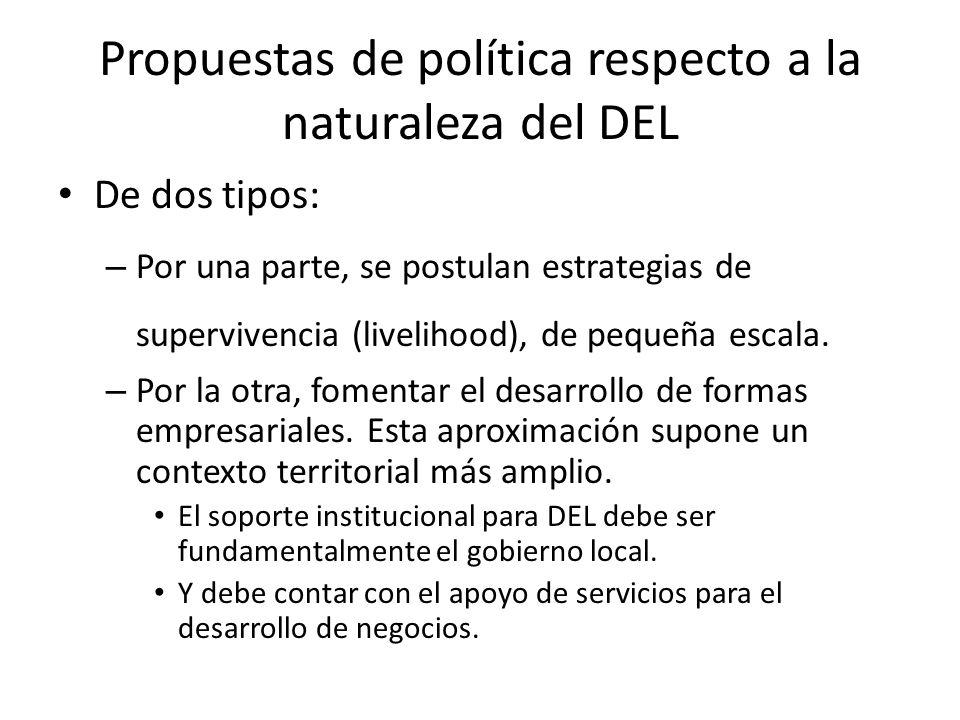Propuestas de política respecto a la naturaleza del DEL De dos tipos: – Por una parte, se postulan estrategias de supervivencia (livelihood), de peque