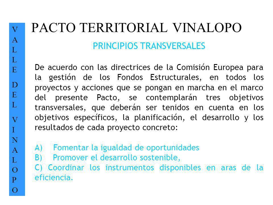 PACTO TERRITORIAL VINALOPO VALLEDELVINALOPOVALLEDELVINALOPO PRINCIPIOS TRANSVERSALES De acuerdo con las directrices de la Comisión Europea para la ges