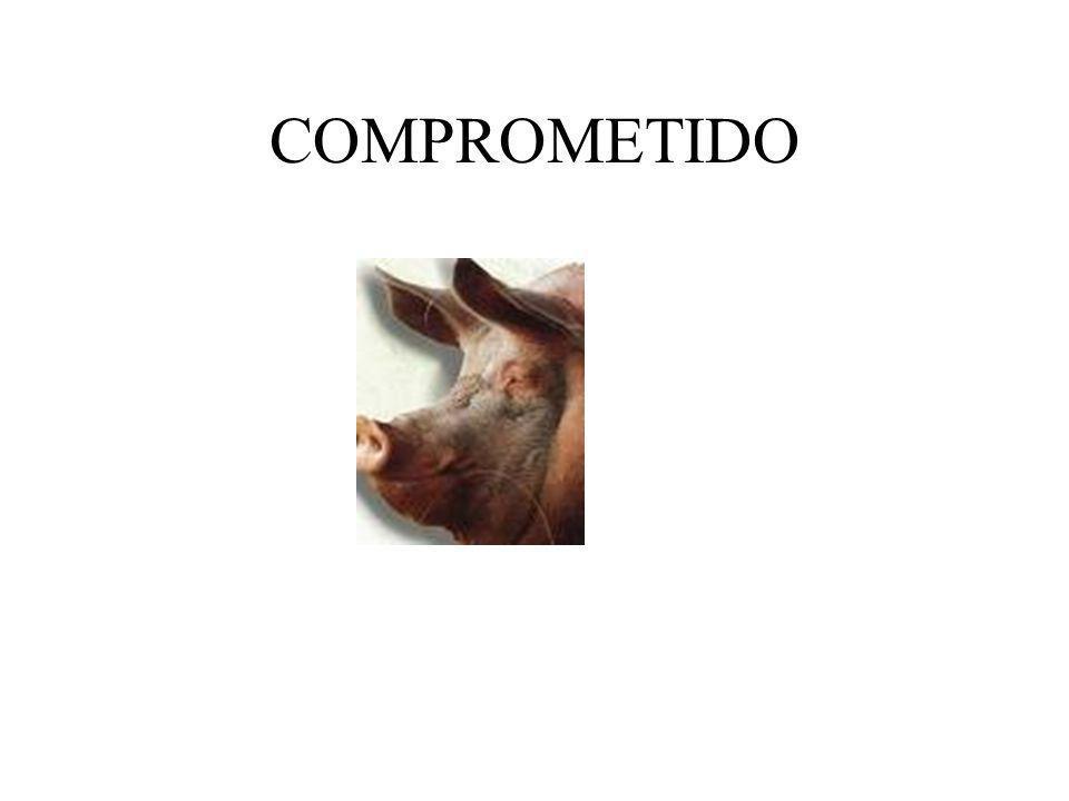 CONSECUCION DE LAS COMPETENCIAS MARCOCOMPETENCIALMARCOCOMPETENCIAL.