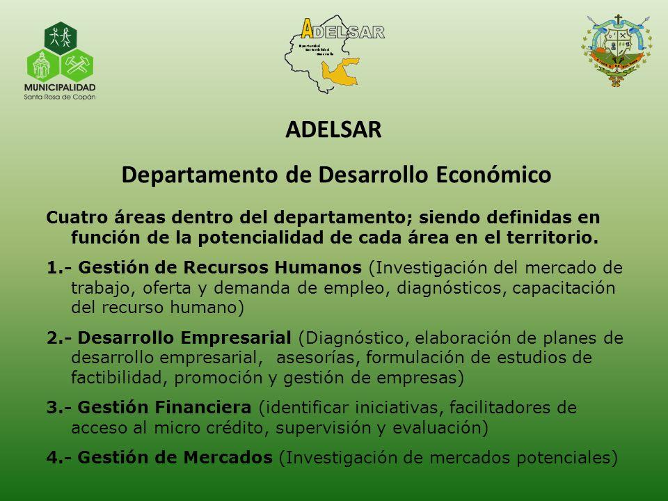Cuatro áreas dentro del departamento; siendo definidas en función de la potencialidad de cada área en el territorio. 1.- Gestión de Recursos Humanos (
