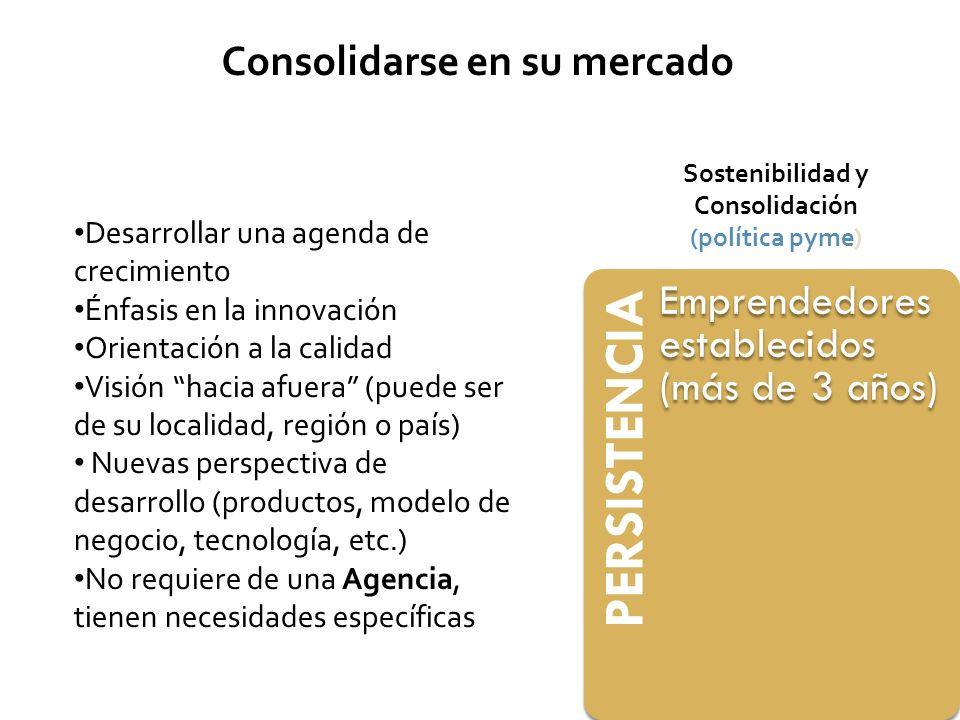 PERSISTENCIA Emprendedores establecidos (más de 3 años) Sostenibilidad y Consolidación (política pyme) Consolidarse en su mercado Desarrollar una agen