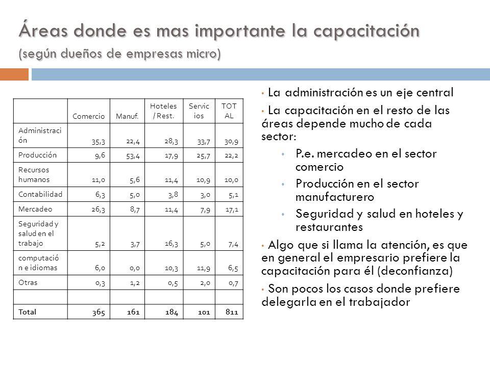 Áreas donde es mas importante la capacitación (según dueños de empresas micro) La administración es un eje central La capacitación en el resto de las
