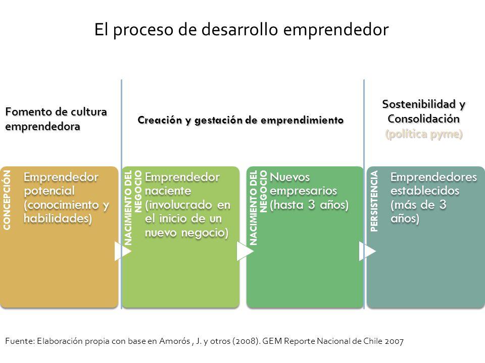 CONCEPCIÓN Emprendedor potencial (conocimiento y habilidades) NACIMIENTO DEL NEGOCIO Emprendedor naciente (involucrado en el inicio de un nuevo negoci