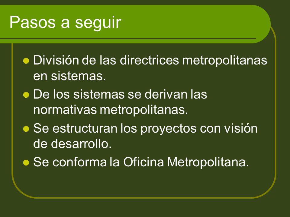Pasos a seguir División de las directrices metropolitanas en sistemas.