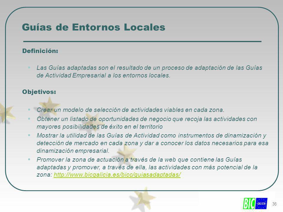 36 Guías de Entornos Locales Definición: Las Guías adaptadas son el resultado de un proceso de adaptación de las Guías de Actividad Empresarial a los