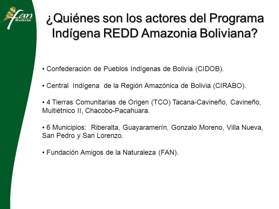 ¿Cuál es el área de acción del Programa Indígena REDD Amazonia Boliviana.