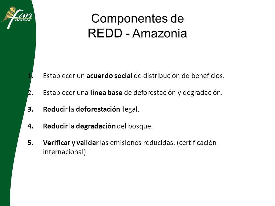 Componentes de REDD - Amazonia 1.Establecer un acuerdo social de distribución de beneficios.