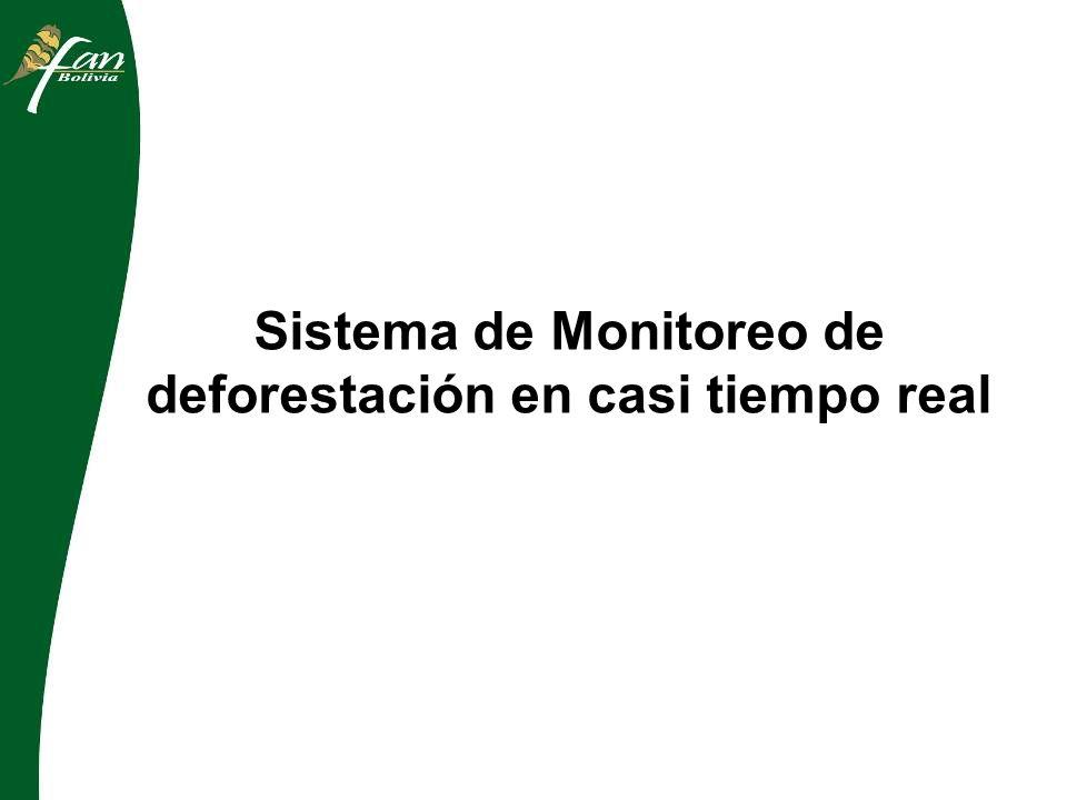 Sistema de Monitoreo de deforestación en casi tiempo real