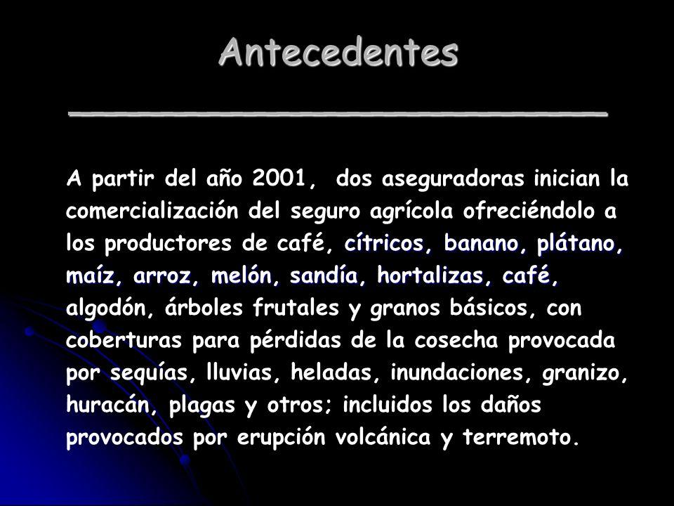 Antecedentes _______________________ cítricos, banano, plátano, maíz, arroz, melón, sandía, hortalizas, café, A partir del año 2001, dos aseguradoras