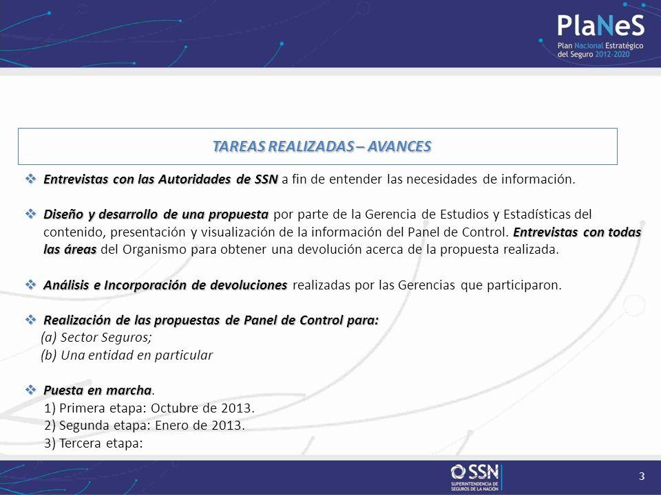 3 TAREAS REALIZADAS – AVANCES Entrevistas con las Autoridades de SSN Entrevistas con las Autoridades de SSN a fin de entender las necesidades de infor