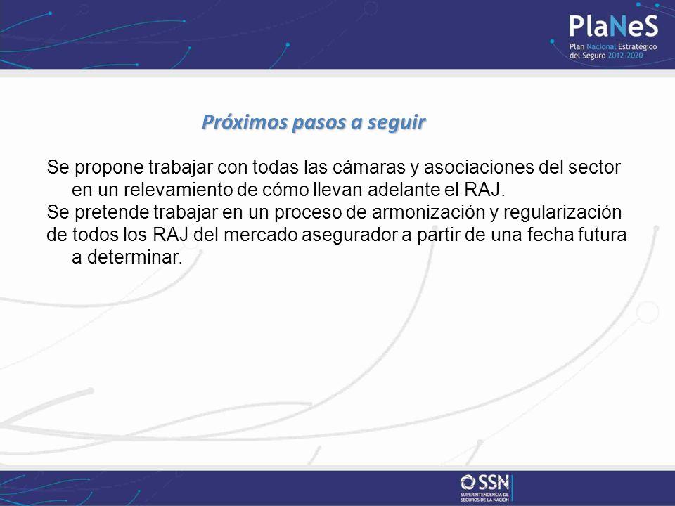 Próximos pasos a seguir Se propone trabajar con todas las cámaras y asociaciones del sector en un relevamiento de cómo llevan adelante el RAJ. Se pret