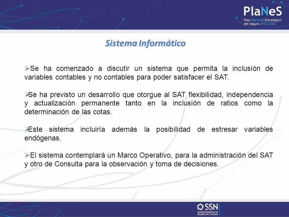 Sistema Informático Sistema Informático Se ha comenzado a discutir un sistema que permita la inclusión de variables contables y no contables para poder satisfacer el SAT.