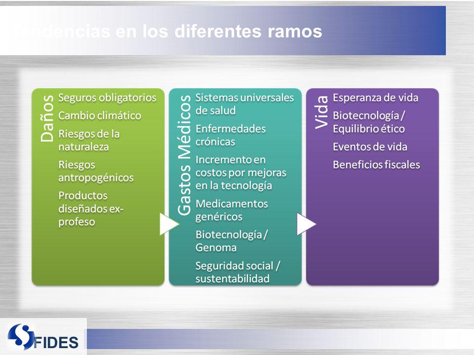 FIDES Tendencias en los diferentes ramos