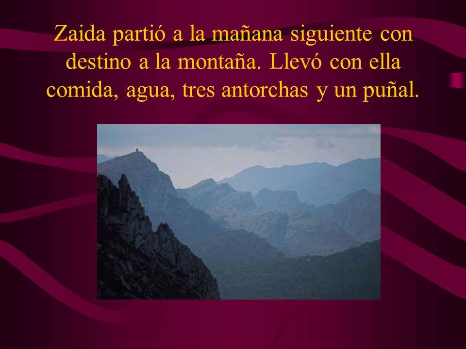 Zaida partió a la mañana siguiente con destino a la montaña.