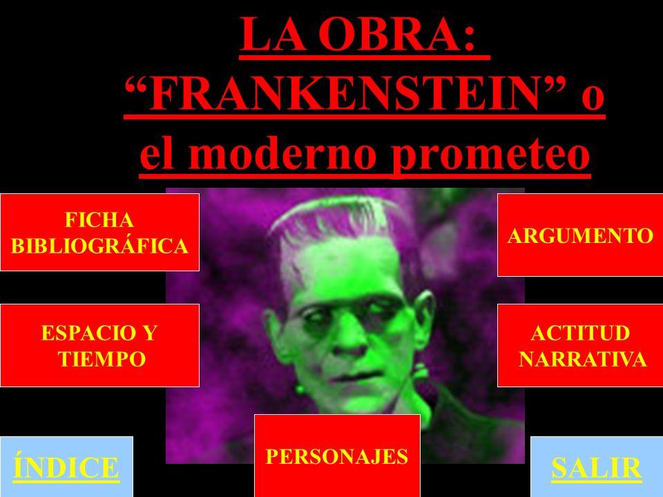 Frankenstein puede ser leído como un cuento de lo que ocurre cuando un hombre intenta crear a un niño sin una mujer.