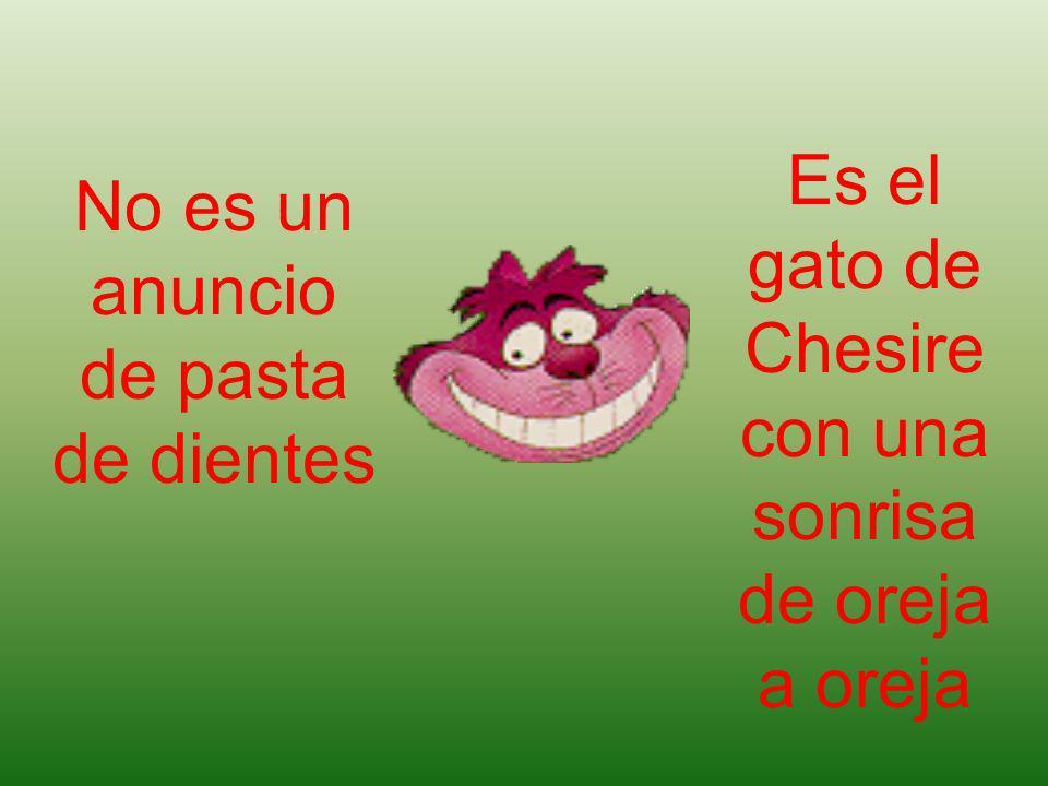 No es un anuncio de pasta de dientes Es el gato de Chesire con una sonrisa de oreja a oreja