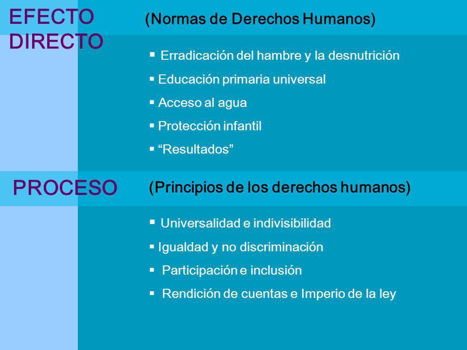 (Normas de Derechos Humanos) Erradicación del hambre y la desnutrición Educación primaria universal Acceso al agua Protección infantil Resultados Univ