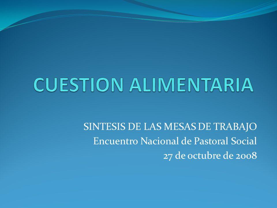 SINTESIS DE LAS MESAS DE TRABAJO Encuentro Nacional de Pastoral Social 27 de octubre de 2008