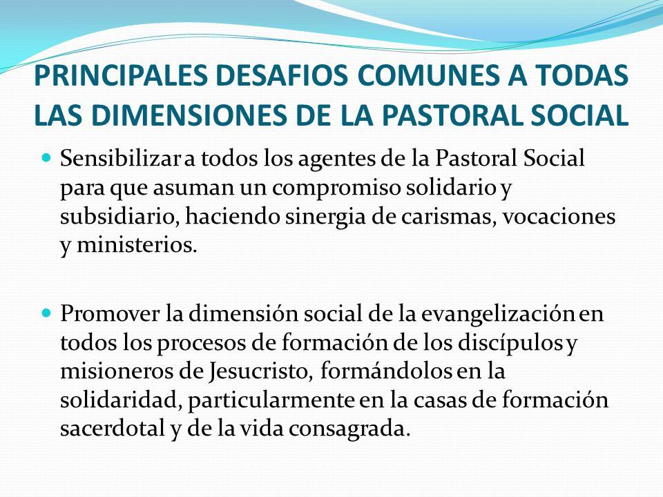 PRINCIPALES DESAFIOS COMUNES A TODAS LAS DIMENSIONES DE LA PASTORAL SOCIAL Sensibilizar a todos los agentes de la Pastoral Social para que asuman un compromiso solidario y subsidiario, haciendo sinergia de carismas, vocaciones y ministerios.