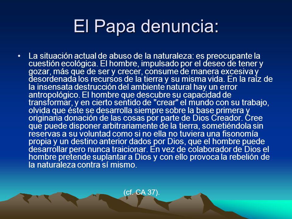 El Papa denuncia: La situación actual de abuso de la naturaleza: es preocupante la cuestión ecológica. El hombre, impulsado por el deseo de tener y go