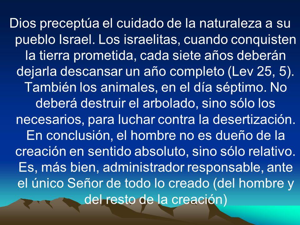 Dios preceptúa el cuidado de la naturaleza a su pueblo Israel. Los israelitas, cuando conquisten la tierra prometida, cada siete años deberán dejarla