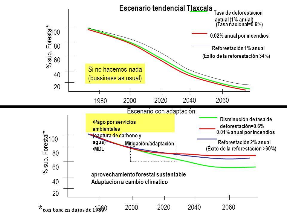 1980 2000 202020402060 % sup. Forestal* 100 80 60 40 20 * con base en datos de 1980 Tasa de deforestación actual (1% anual) (Tasa nacional=0.6%) Escen