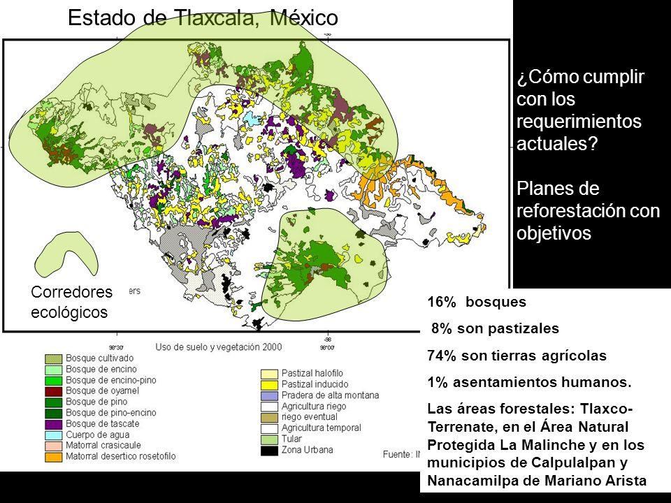 16% bosques 8% son pastizales 74% son tierras agrícolas 1% asentamientos humanos. Las áreas forestales: Tlaxco- Terrenate, en el Área Natural Protegid