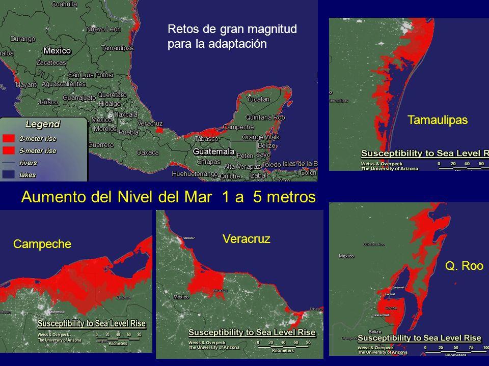 Aumento del Nivel del Mar 1 a 5 metros Campeche Veracruz Q. Roo Tamaulipas Retos de gran magnitud para la adaptación