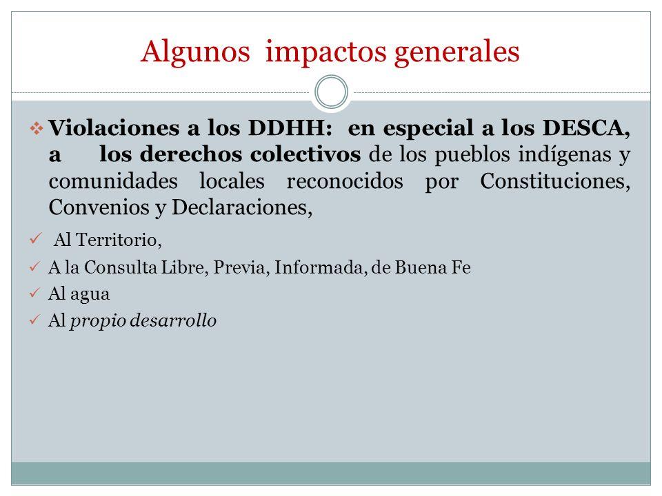 Algunos impactos generales Violaciones a los DDHH: en especial a los DESCA, a los derechos colectivos de los pueblos indígenas y comunidades locales r