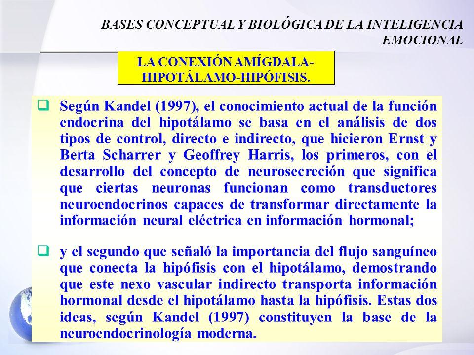 36 BASES CONCEPTUAL Y BIOLÓGICA DE LA INTELIGENCIA EMOCIONAL Según Kandel (1997), el conocimiento actual de la función endocrina del hipotálamo se basa en el análisis de dos tipos de control, directo e indirecto, que hicieron Ernst y Berta Scharrer y Geoffrey Harris, los primeros, con el desarrollo del concepto de neurosecreción que significa que ciertas neuronas funcionan como transductores neuroendocrinos capaces de transformar directamente la información neural eléctrica en información hormonal; y el segundo que señaló la importancia del flujo sanguíneo que conecta la hipófisis con el hipotálamo, demostrando que este nexo vascular indirecto transporta información hormonal desde el hipotálamo hasta la hipófisis.