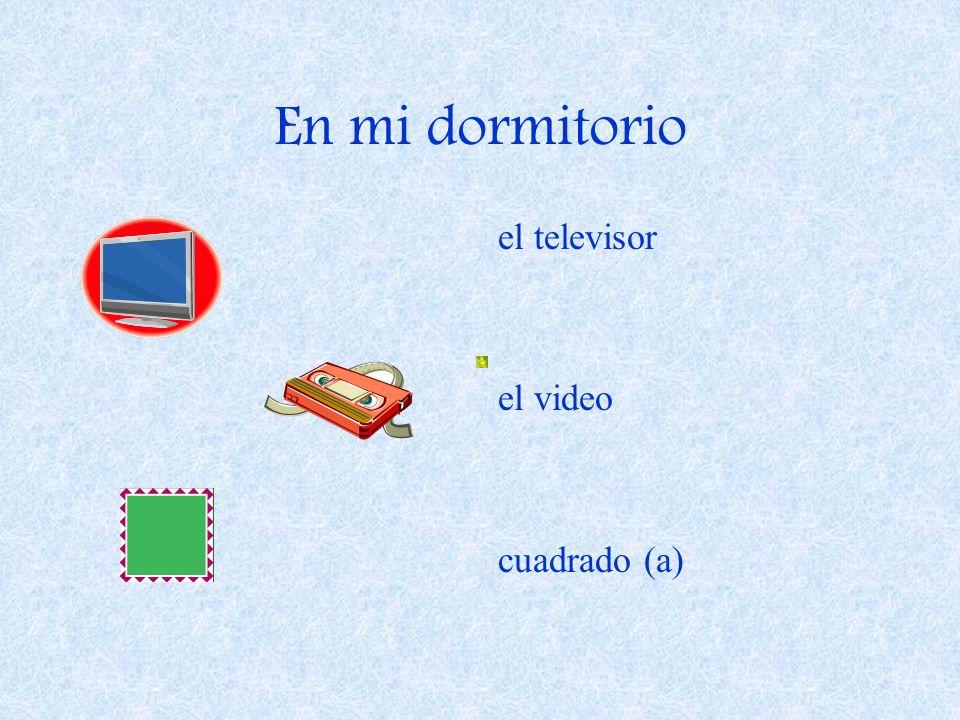 En mi dormitorio el televisor el video cuadrado (a)