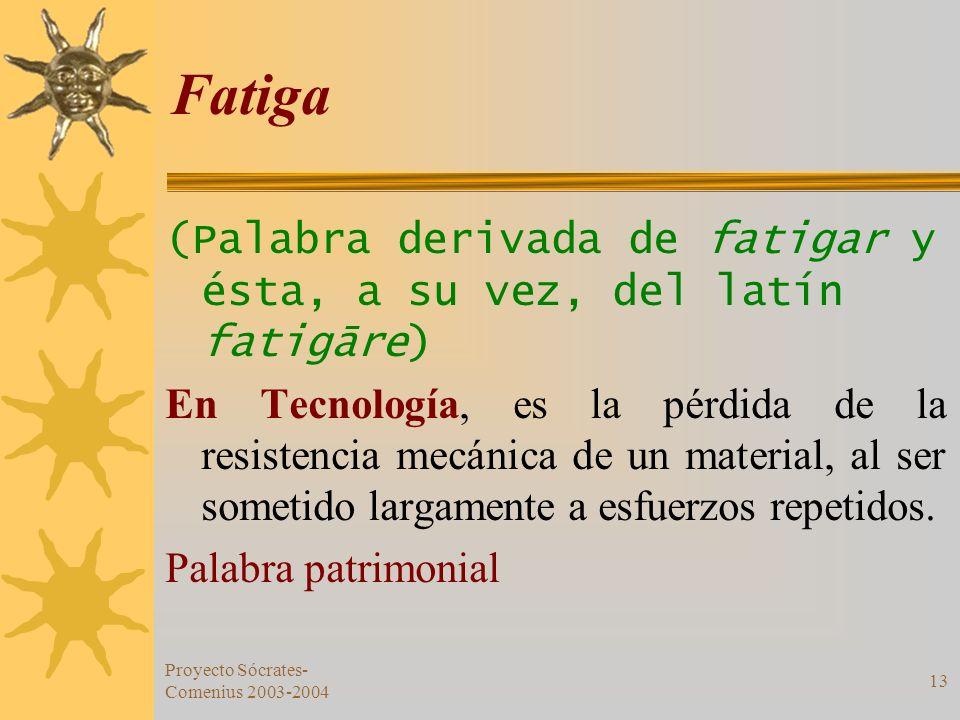 Proyecto Sócrates- Comenius 2003-2004 13 Fatiga (Palabra derivada de fatigar y ésta, a su vez, del latín fatigāre) En Tecnología, es la pérdida de la