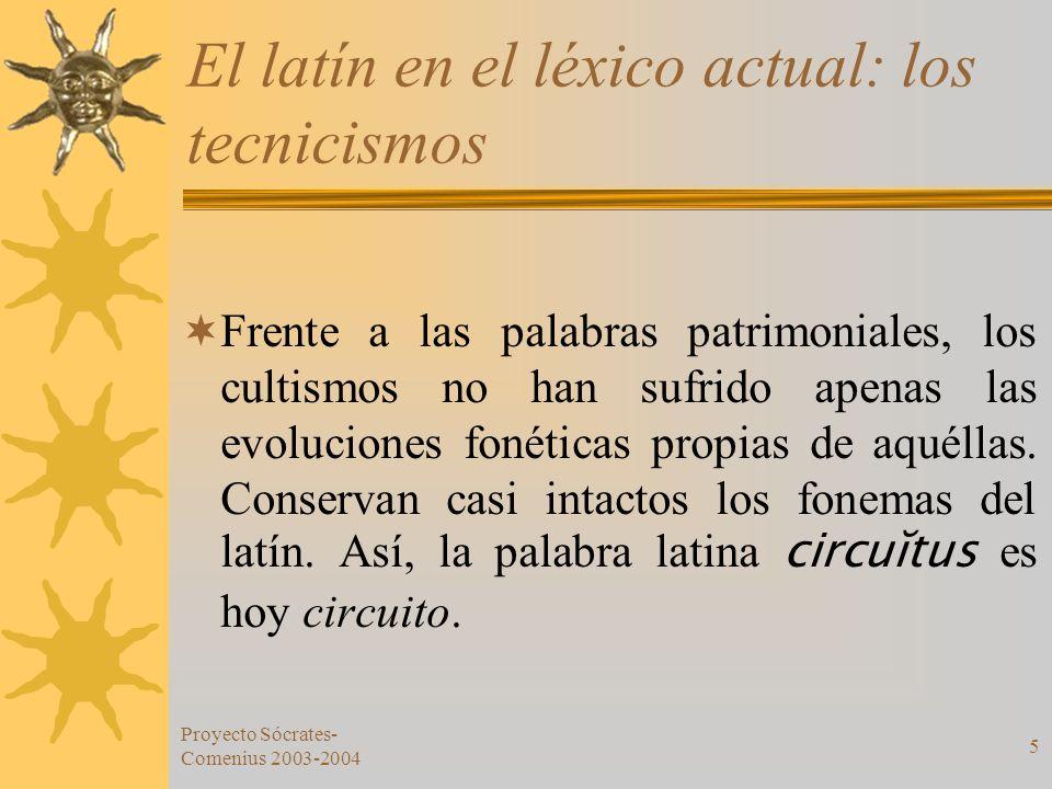 Proyecto Sócrates- Comenius 2003-2004 5 El latín en el léxico actual: los tecnicismos Frente a las palabras patrimoniales, los cultismos no han sufrid