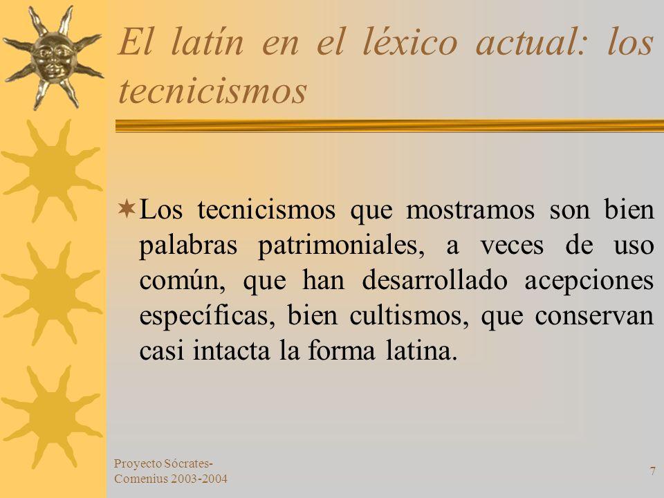 Proyecto Sócrates- Comenius 2003-2004 7 El latín en el léxico actual: los tecnicismos Los tecnicismos que mostramos son bien palabras patrimoniales, a