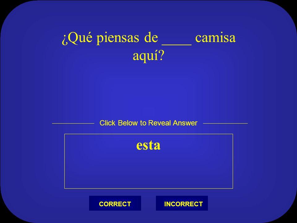 Escribir (tú) escribiste Click Below to Reveal Answer INCORRECTCORRECT
