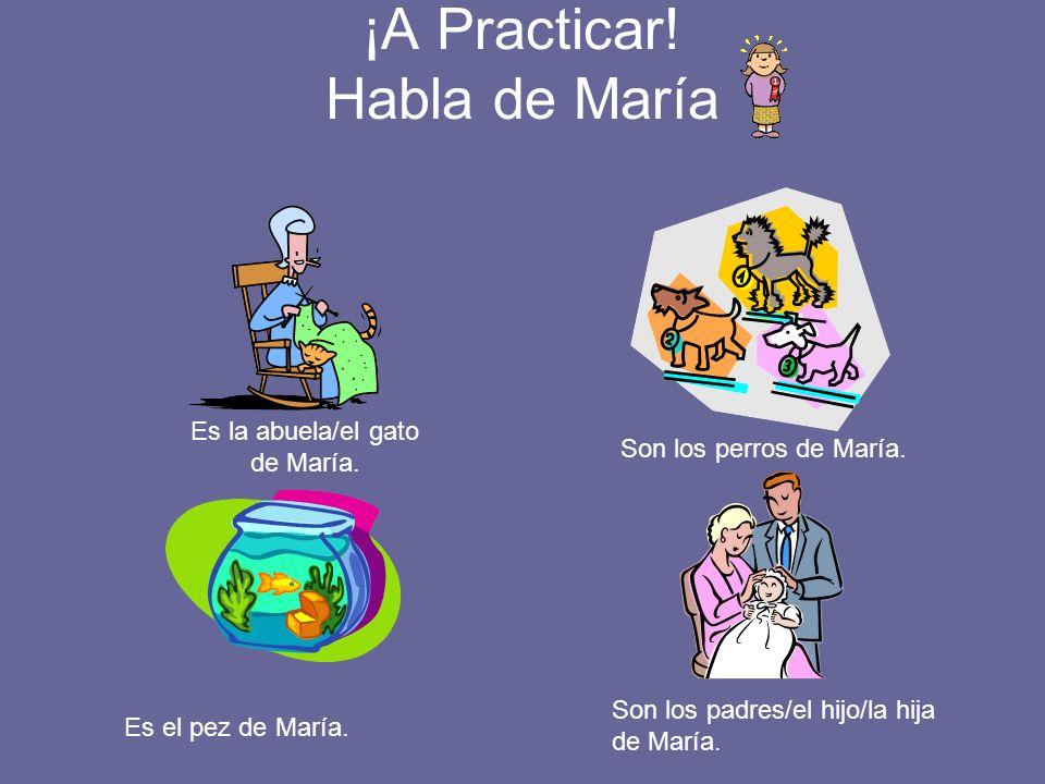 ¡A Practicar! Habla de María Es la abuela/el gato de María. Son los perros de María. Es el pez de María. Son los padres/el hijo/la hija de María.