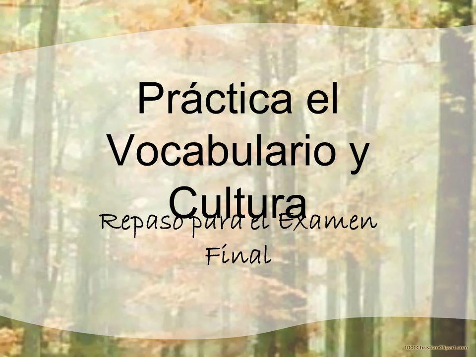 Práctica el Vocabulario y Cultura Repaso para el Examen Final