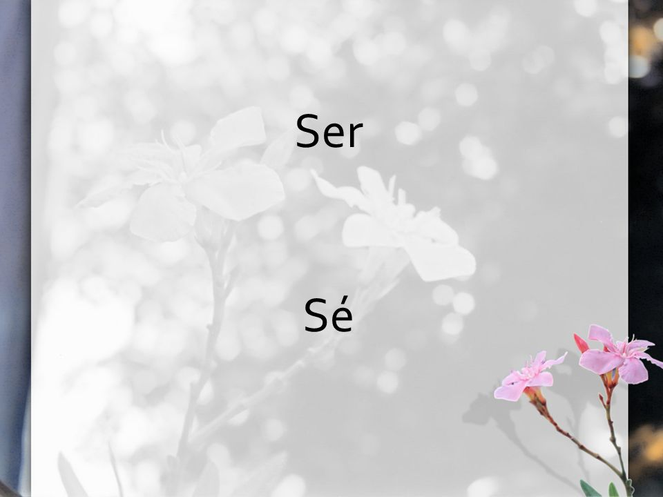 Ser Sé