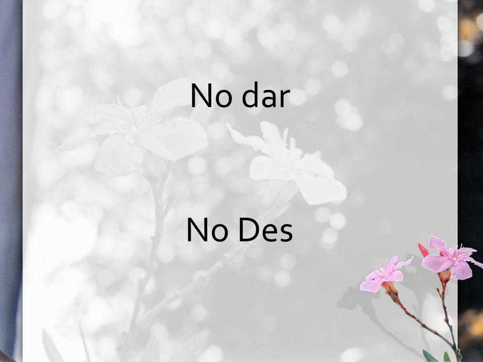 No dar No Des