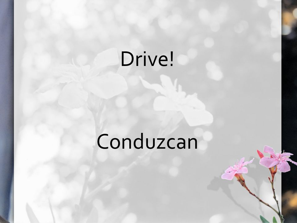 Drive! Conduzcan