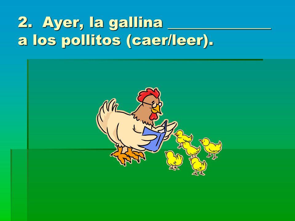 2. Ayer, la gallina ______________ a los pollitos (caer/leer).