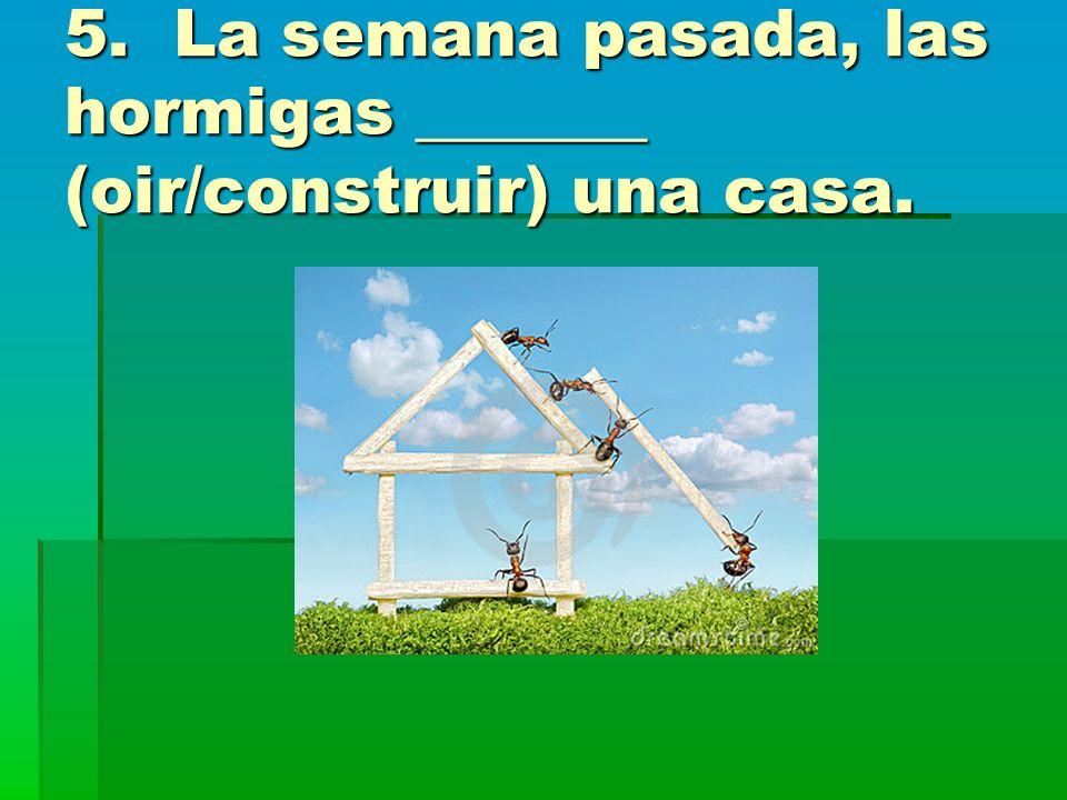5. La semana pasada, las hormigas _______ (oir/construir) una casa.