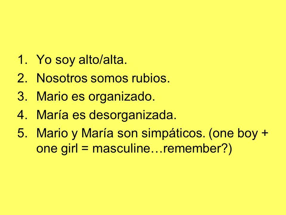 1.Yo soy alto/alta. 2.Nosotros somos rubios. 3.Mario es organizado. 4.María es desorganizada. 5.Mario y María son simpáticos. (one boy + one girl = ma