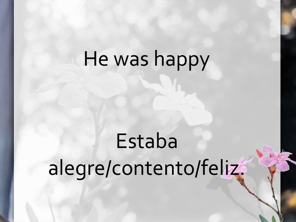He was happy Estaba alegre/contento/feliz.